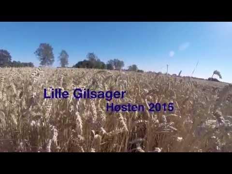 Gilsager Høst 2015