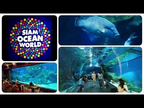 Siam Ocean World Video Tour