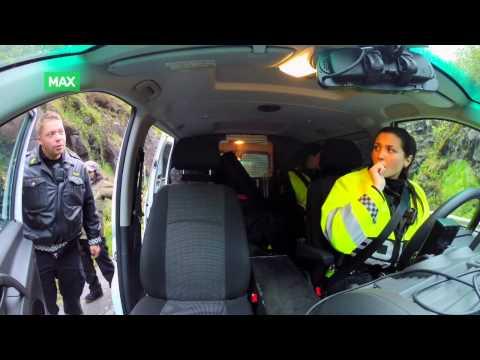 Politiet må avlive skadet måke