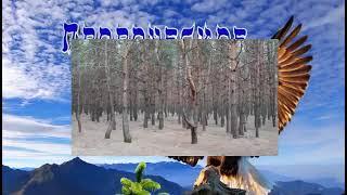 Пророческая поэма для церкви, часть седьмая 7.3