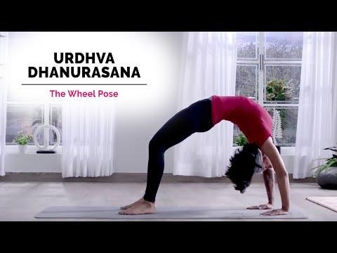 Urdhva Dhanurasana Yoga | Wheel Pose | Steps | Benefits | Yogic Fitness