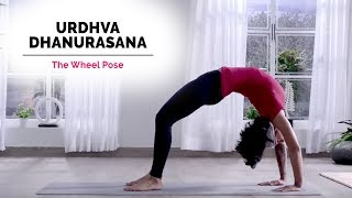Urdhva Dhanurasana Yoga | Wheel Pose | Steps | Benefits | Yogic Fitness