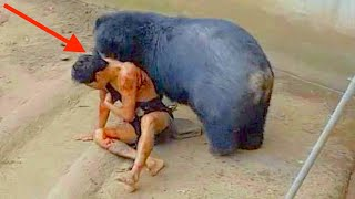 Top 10 Most Ruthless Creatures of the Animal Kingdom