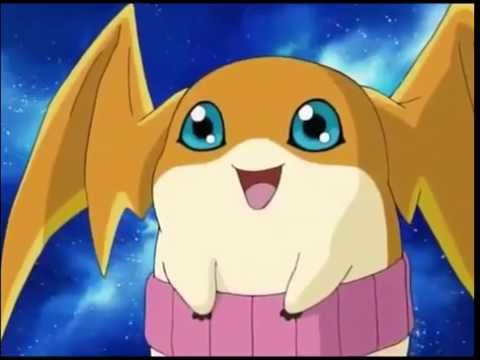 Cute momment from Digimon Frontier (Patamon, Plotmon & Babies) / Adventure Reference