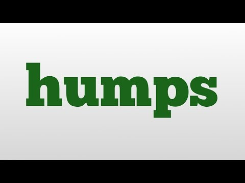 humps meaning and pronunciation