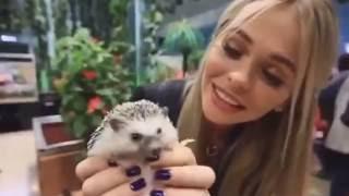 Анна Хилькевич гладит киску в контактном зоопарке!
