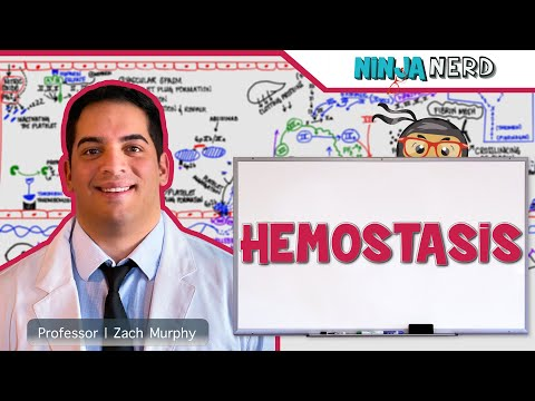Hematology | Hemostasis: Coagulation Cascade