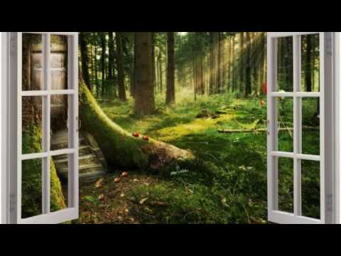 Relaxing zen music for spa, relaxation, massage, creativity, studying. F. Amathy