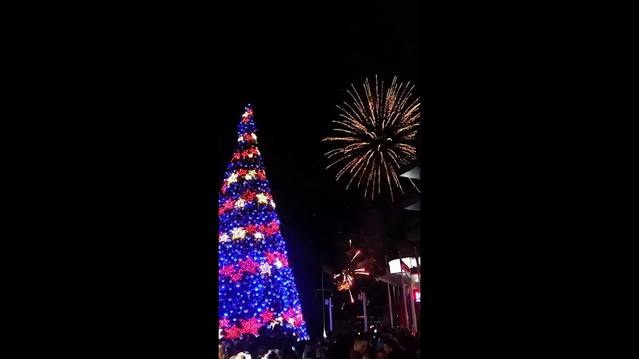 National Harbor Christmas tree and fireworks 2015 & National Harbor Christmas tree and fireworks 2015 - YouTube azcodes.com
