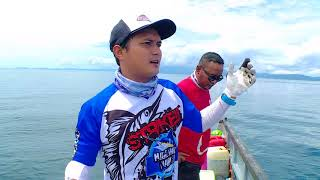 (21.0 MB) MANCING MANIA - MONSTER KARANG PAPUA BARAT (2/9/17) 3-1 Mp3