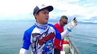 MANCING MANIA - MONSTER KARANG PAPUA BARAT (2/9/17) 3-1