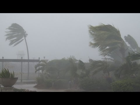 Strong Winds, Torrential Rain - Typhoon Noul 4K Stock Footage Screener