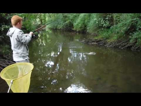 Catching Trout In Crimple Beck Hookstone Woods Harrogate