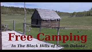 Free Black Hills Camping