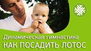 Поселение родовых поместий Радосвет. Влог выпуск 5. Как правильно сажать лотосы