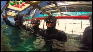 Born to be Wild: Doc Nielsen Donato meets the ocean