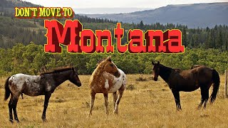 Top 10 reasons NOT to Move To Montana. Allergies feel like you need a Mesothelioma Law Firm