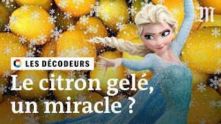 Un citron congelé peut-il guérir le cancer ? #LesDécodeurs