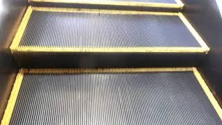 フジグラン緑井のエスカレーターPart3
