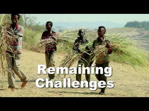 Ethiopia's Poverty Reduction Successes