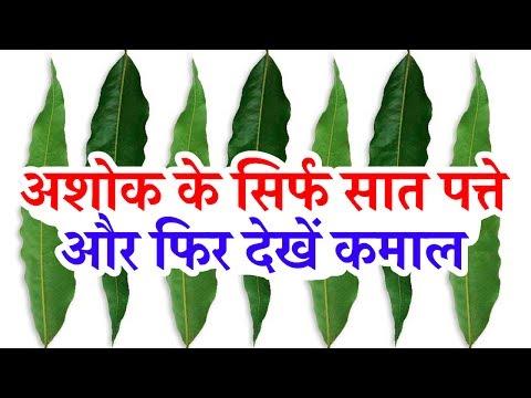 अशोक के सिर्फ सात पत्ते और फिर देखें कमाल // Just seven Leaf of Ashok and then see miracle