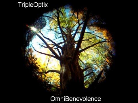 Verbal Symmetry - 6. OmniBenevolence Album - TripleOptix