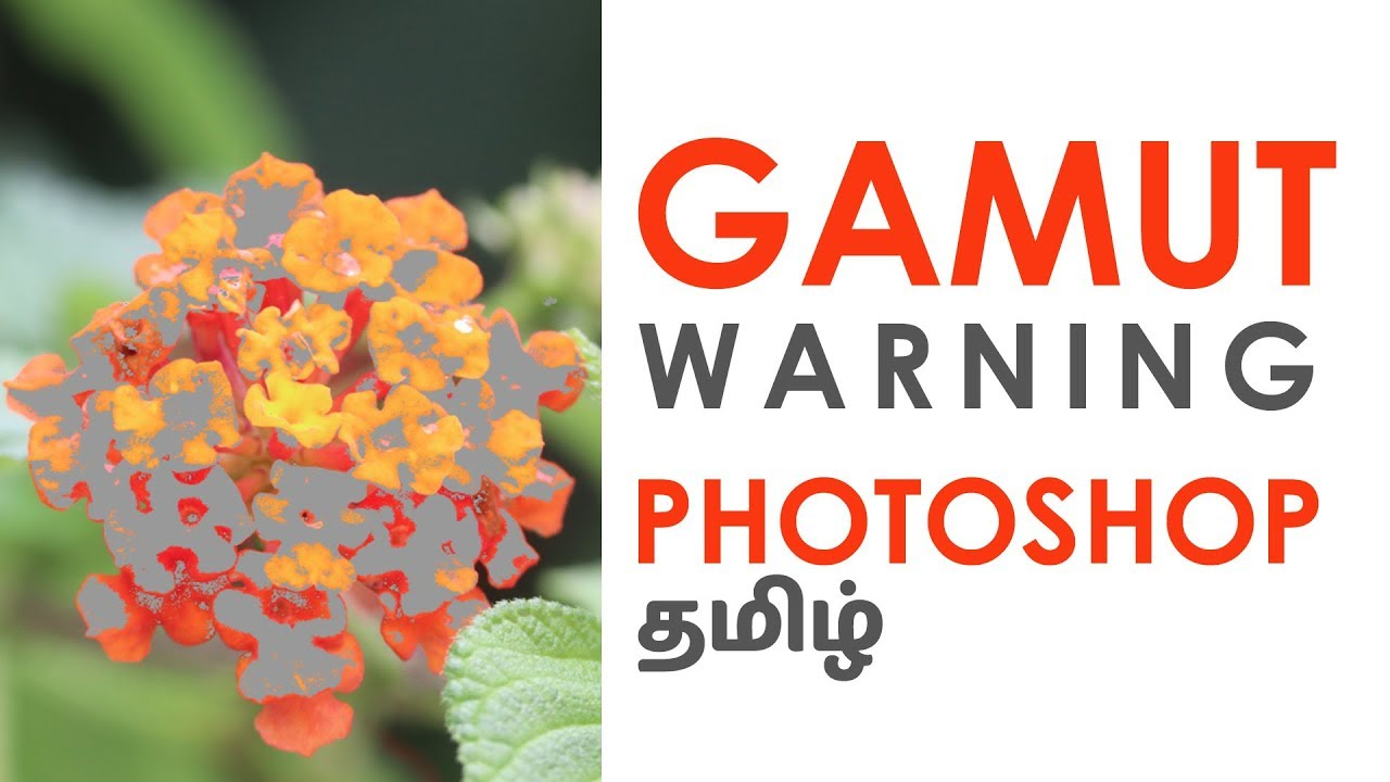 What is Gamut Warning in Photoshop in Tamil | Why Gamut Warning | Color Proof  in Photoshop தமிழ்