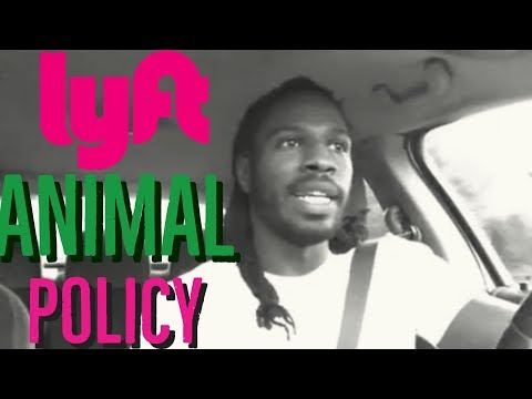 Lyft Animal Policy! 1 tip that could save you the trouble.