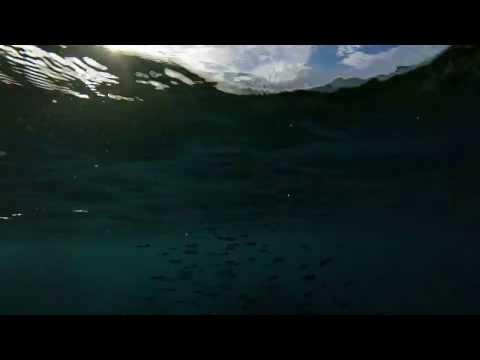 Norman Island Caves with Aqua Blue Charters