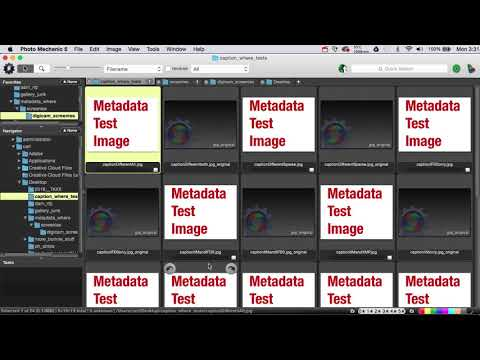 IPTC/IIM, XMP, or Exif - which version of your metadata do you see?