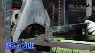 《我爱发明》 20200703 削皮旋风|CCTV农业