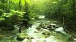 Malayalam patriotic song-Swathadryam