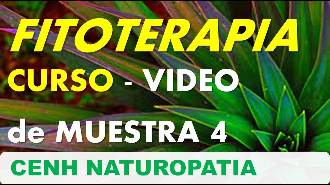 VIDEO DE MUESTRA 4