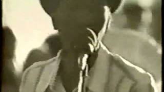 Hound dog taylor: Shake your moneymaker