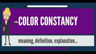 What is COLOR CONSTANCY? What does COLOR CONSTANCY mean? COLOR CONSTANCY meaning & explanation