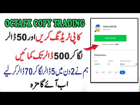 octafx-copy-trading-offer- -50$-laga-kar-500$-kamao- -copy-trading-complete-details-in-urdu/hindi
