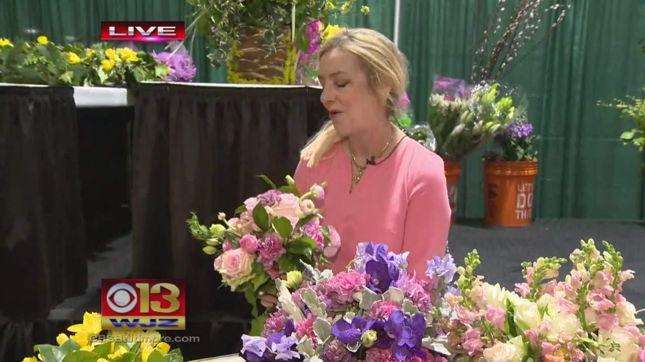 The Maryland Home And Garden Show Youtube