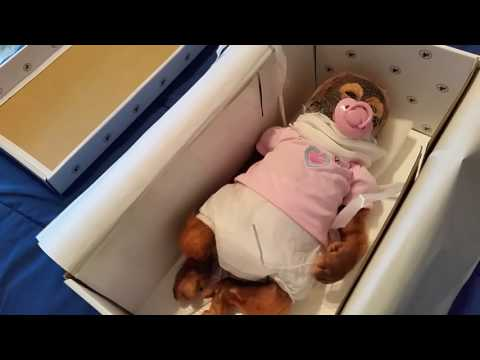 Umi little monkey by Ashton-Drake Galleries part 2