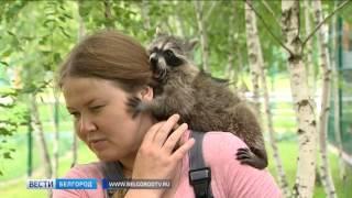 ГТРК Белгород - В Белгородском зоопарке появились новые обитатели