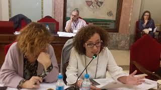 Pleno octubre 2017 - MuyBici