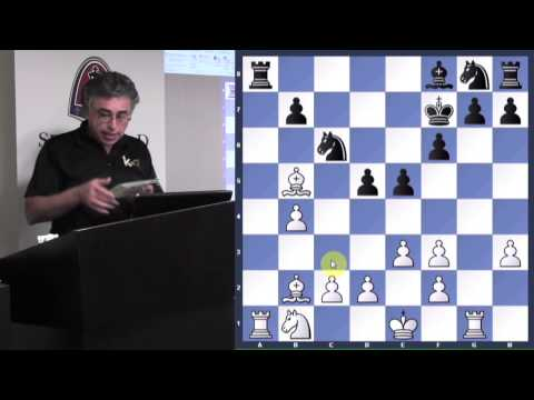 Analyze This! | The Orangutan - GM Yasser Seirawan - 2014.03.11