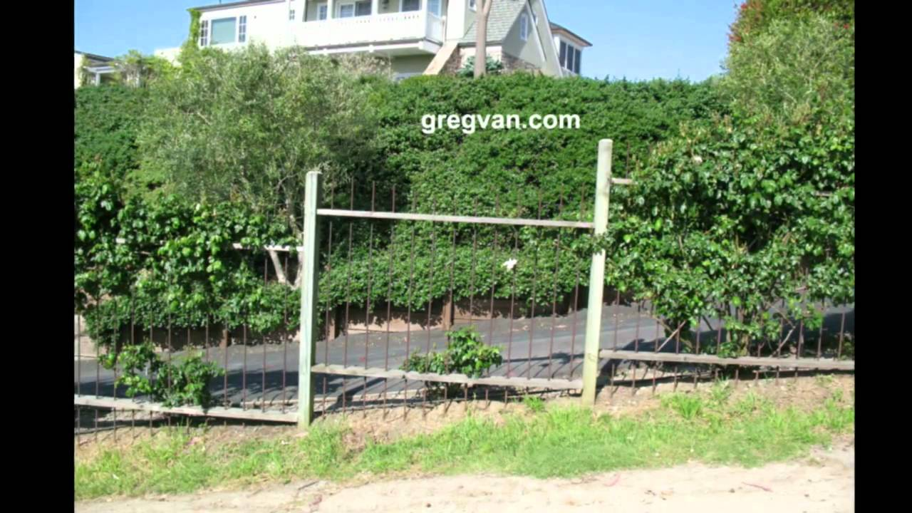 Wood Fence With Rebar Pickets   Amazing Front And Backyard Fences