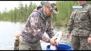Президентская рыбалка в Тыве
