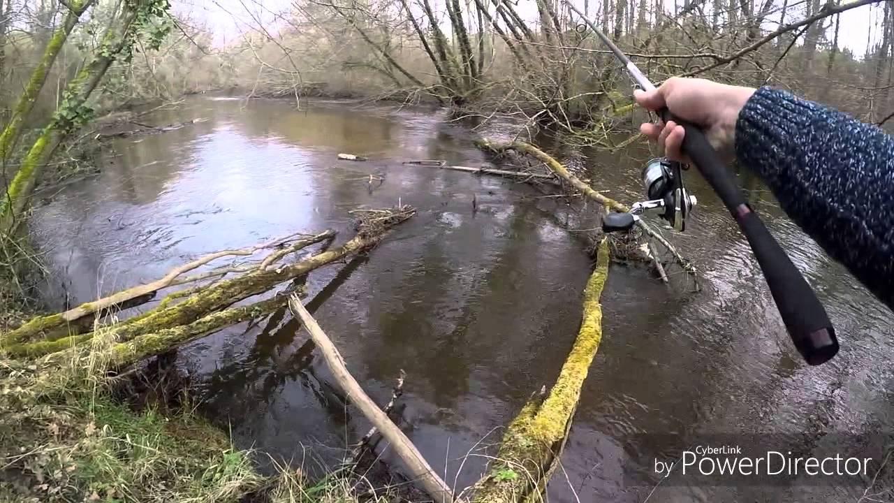 pecher la truite sur le ciron