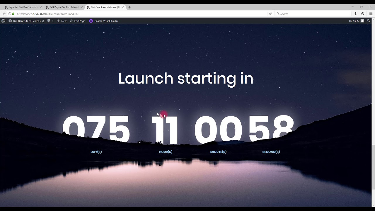 Time Counter Codepen
