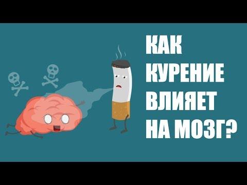 Как курение влияет на мозг человека?