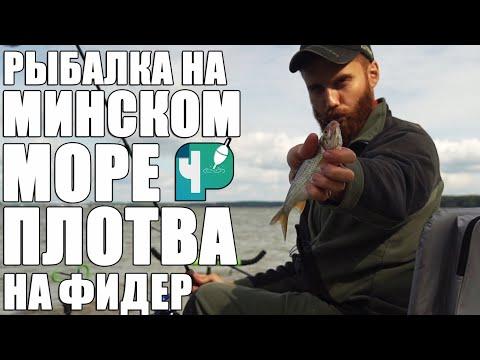 Рыбалка на Минском море.  Плотва на фидер