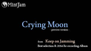 Crying Moon (2014 Re-recording version) / MintJam