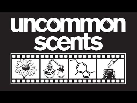 Uncommon Scents: Interview Sneak Peek