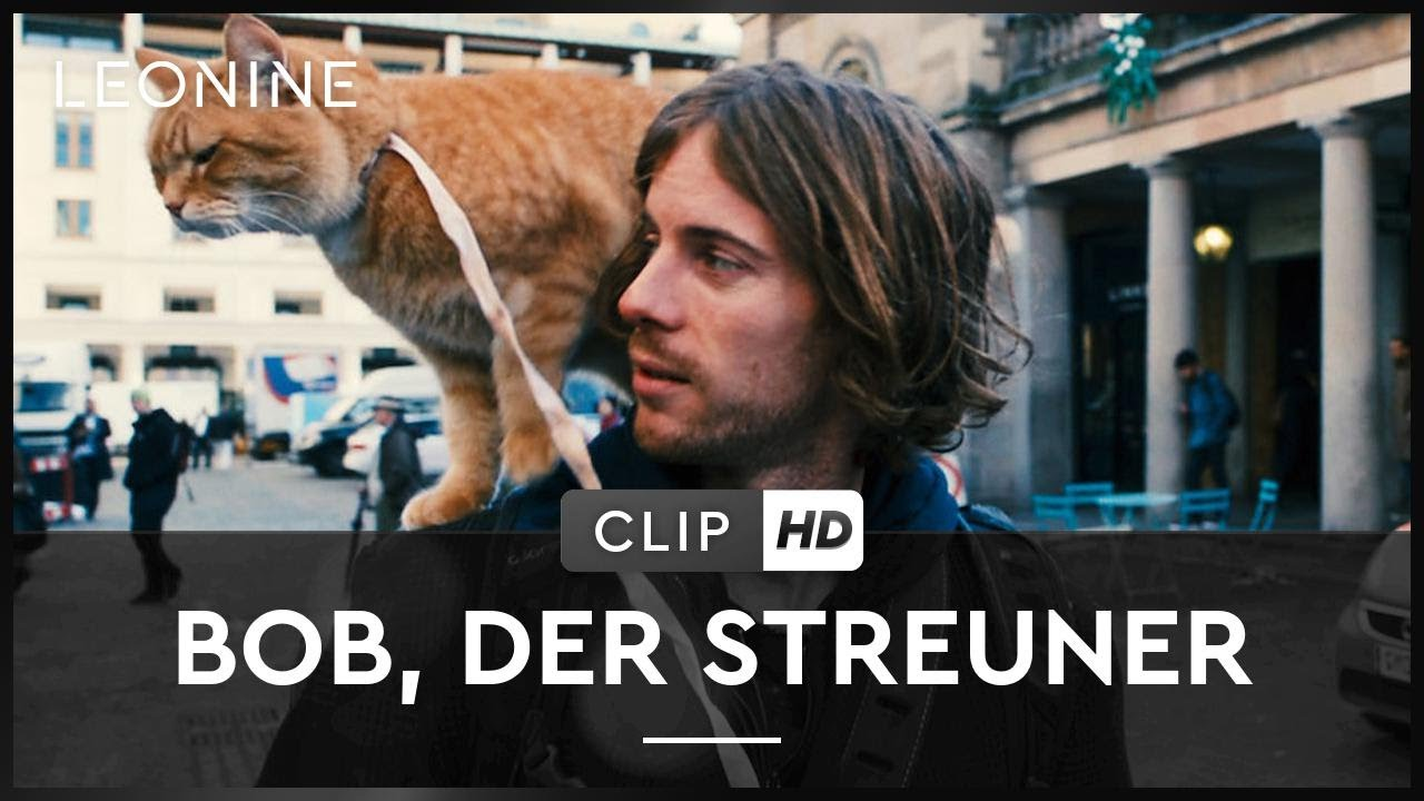 Bob Der Streuner Kinostart